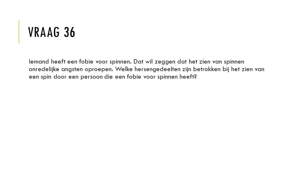 Vraag 36