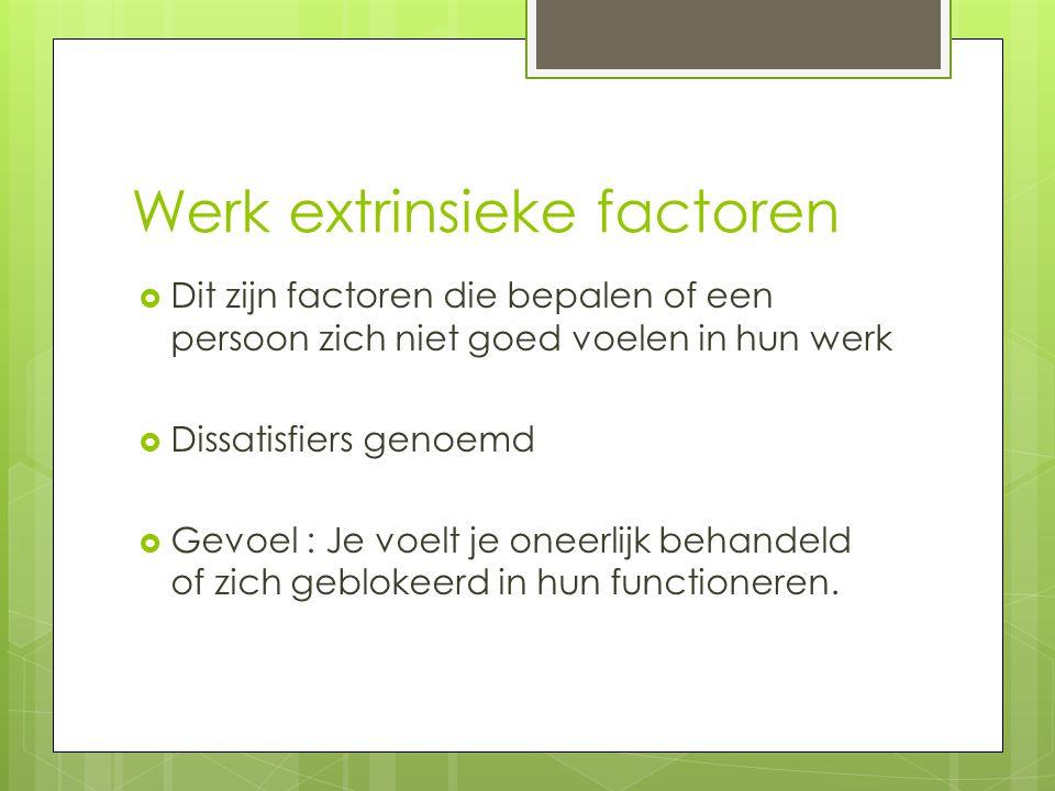 Werk extrinsieke factoren