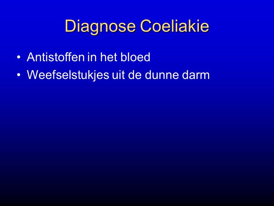 Diagnose Coeliakie Antistoffen in het bloed