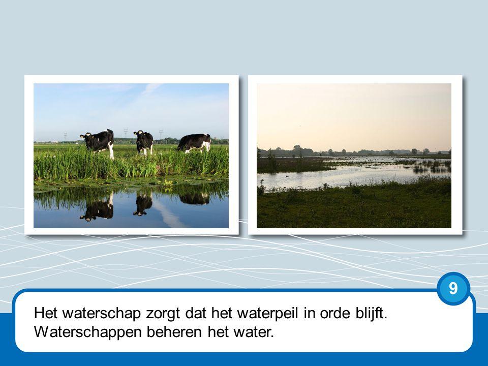 Een waterschap is een bestuurlijke organisatie.