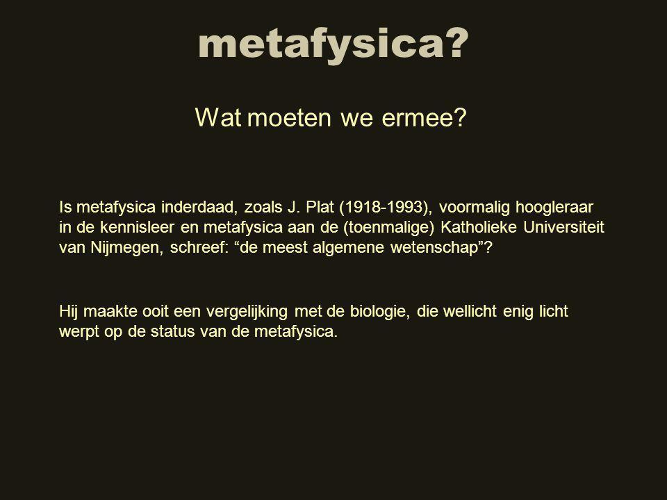 metafysica Wat moeten we ermee