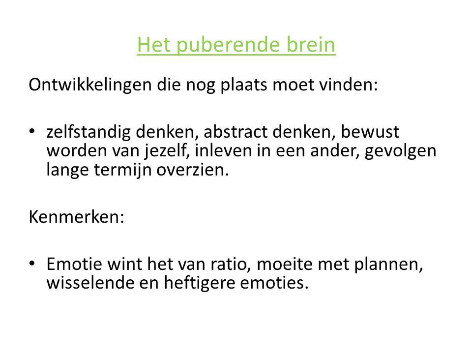 Het puberende brein Ontwikkelingen die nog plaats moet vinden: