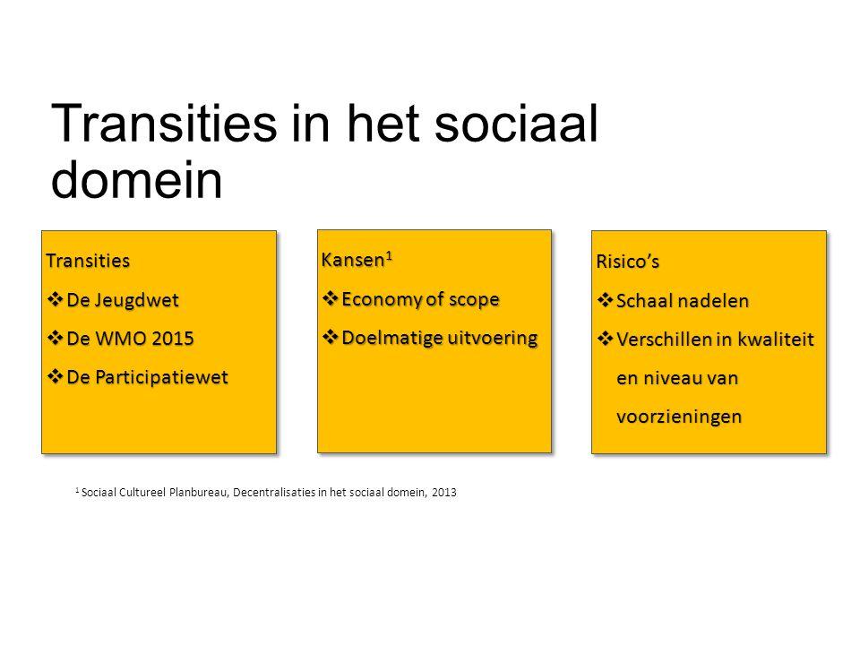 Transities in het sociaal domein