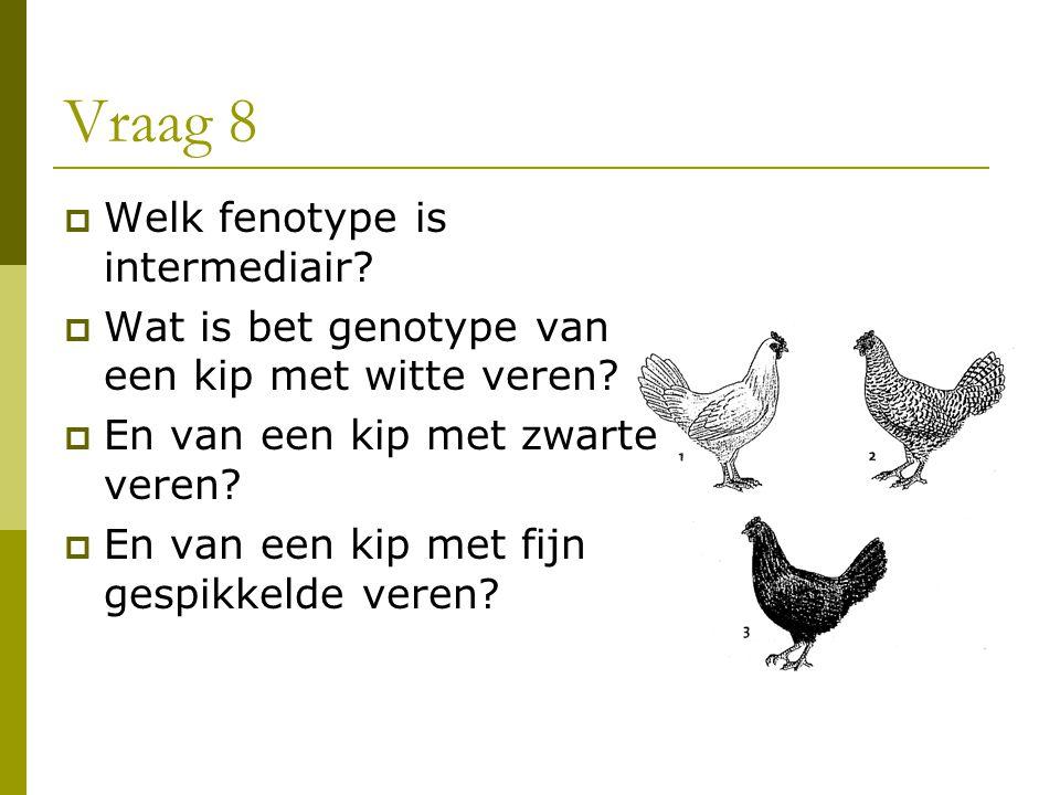 Vraag 8 Welk fenotype is intermediair