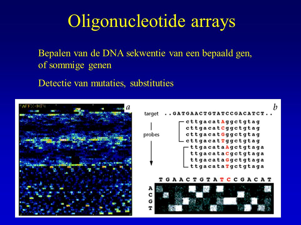 Oligonucleotide arrays