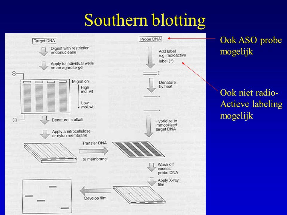 Southern blotting Ook ASO probe mogelijk Ook niet radio-