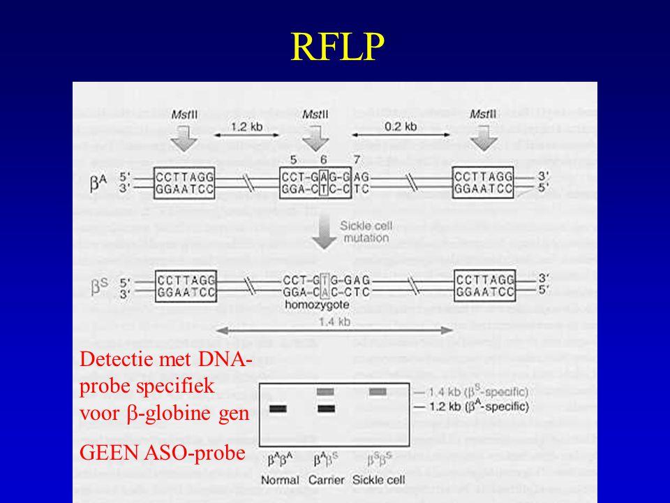 RFLP Detectie met DNA-probe specifiek voor b-globine gen