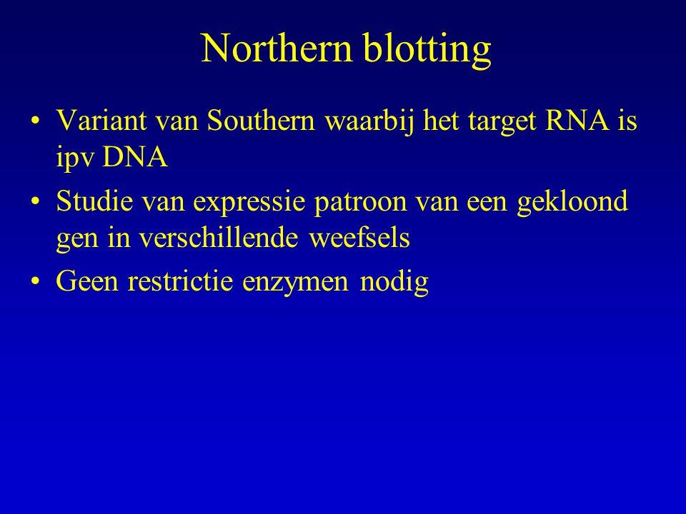 Northern blotting Variant van Southern waarbij het target RNA is ipv DNA.