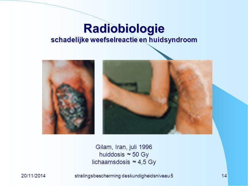 Radiobiologie schadelijke weefselreactie en huidsyndroom