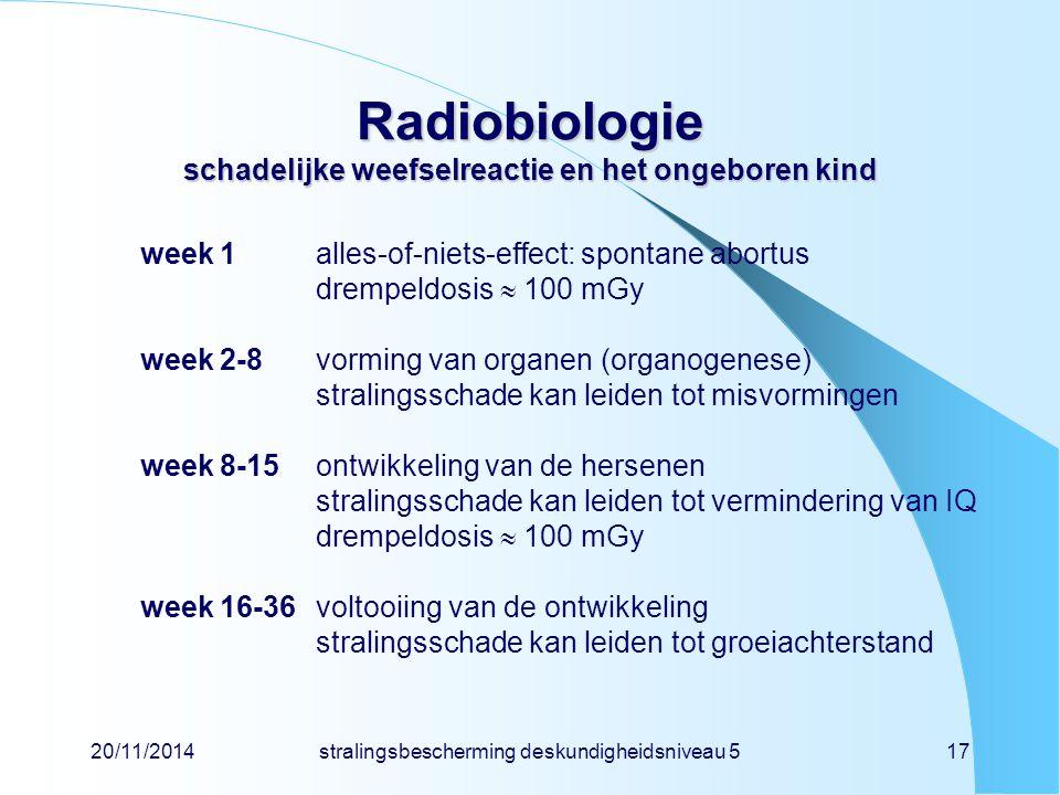 Radiobiologie schadelijke weefselreactie en het ongeboren kind