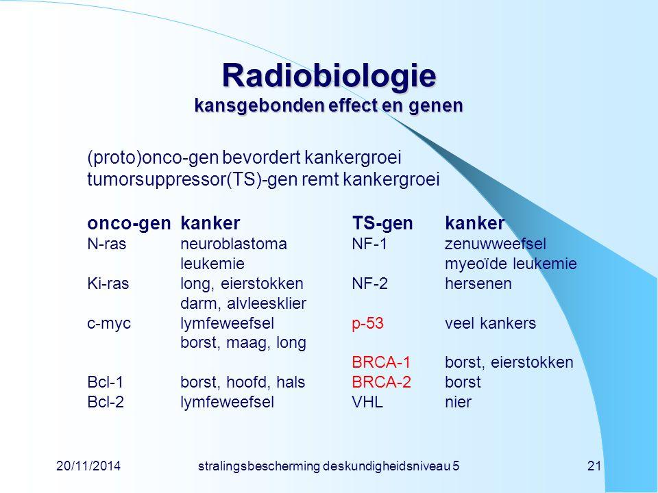 Radiobiologie kansgebonden effect en genen