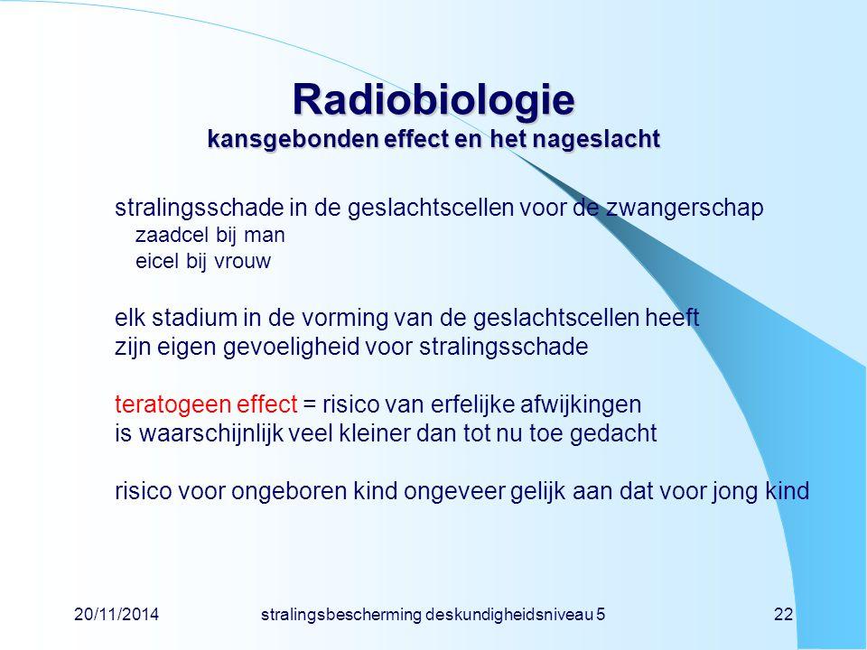 Radiobiologie kansgebonden effect en het nageslacht
