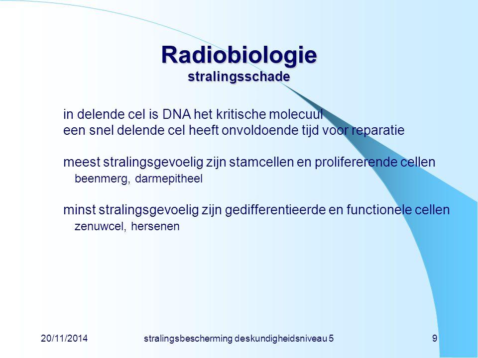 Radiobiologie stralingsschade