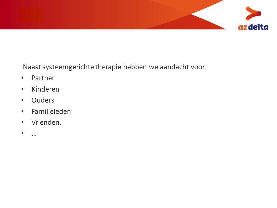 Naast systeemgerichte therapie hebben we aandacht voor: