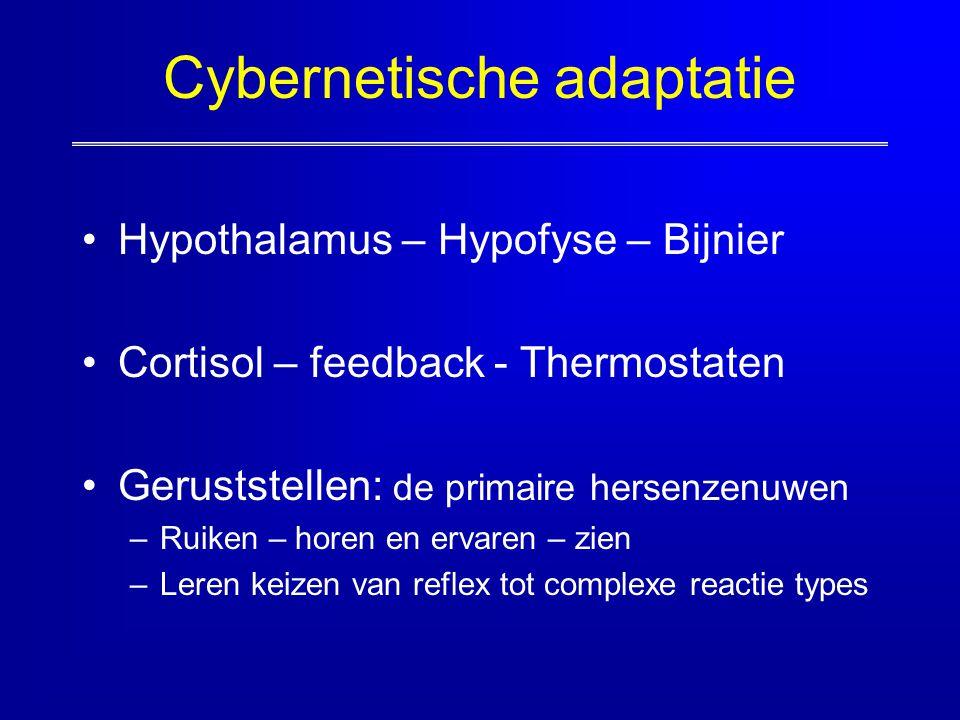 Cybernetische adaptatie