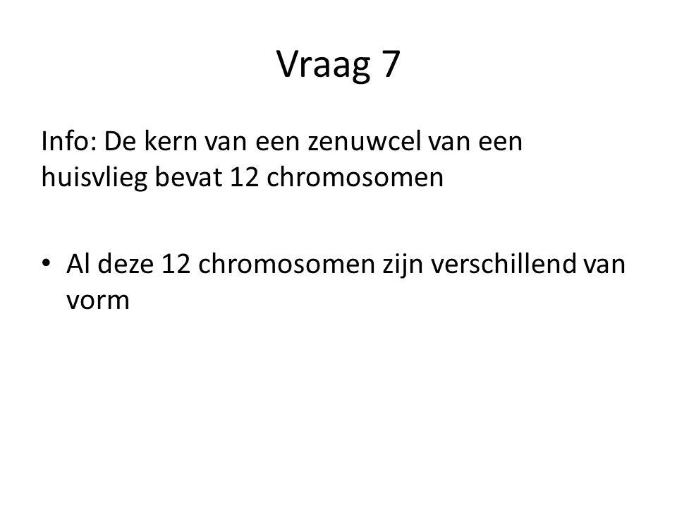 Vraag 7 Info: De kern van een zenuwcel van een huisvlieg bevat 12 chromosomen.