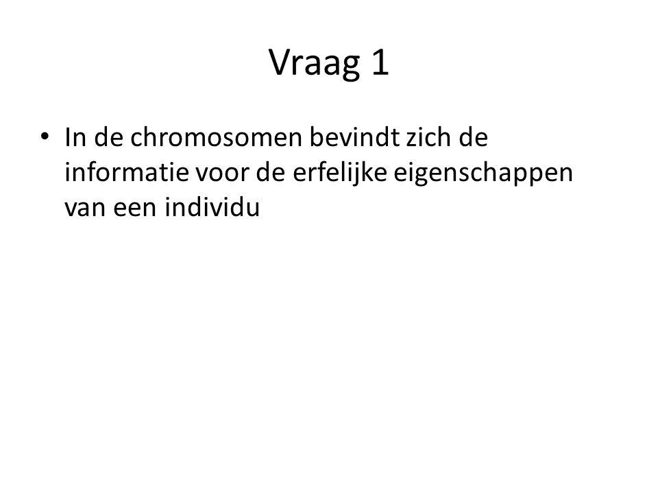 Vraag 1 In de chromosomen bevindt zich de informatie voor de erfelijke eigenschappen van een individu.