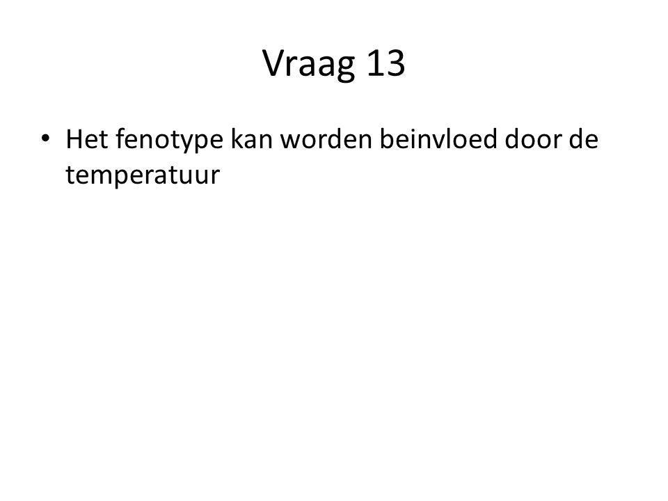 Vraag 13 Het fenotype kan worden beinvloed door de temperatuur