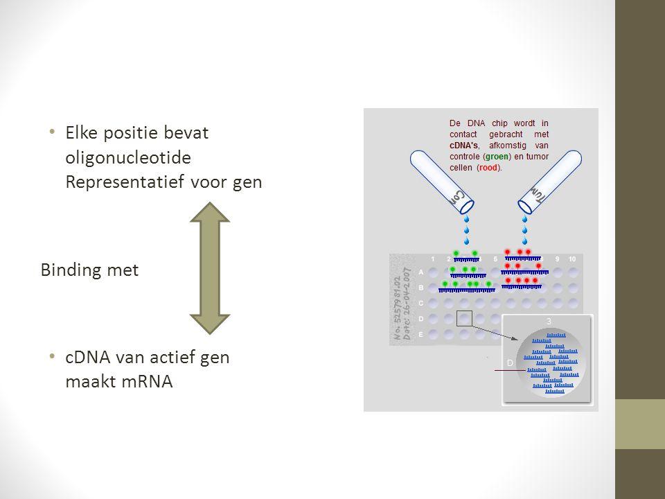 Elke positie bevat oligonucleotide Representatief voor gen