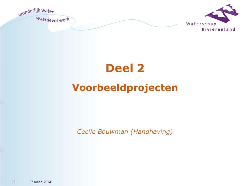Deel 2 Voorbeeldprojecten Cecile Bouwman (Handhaving)