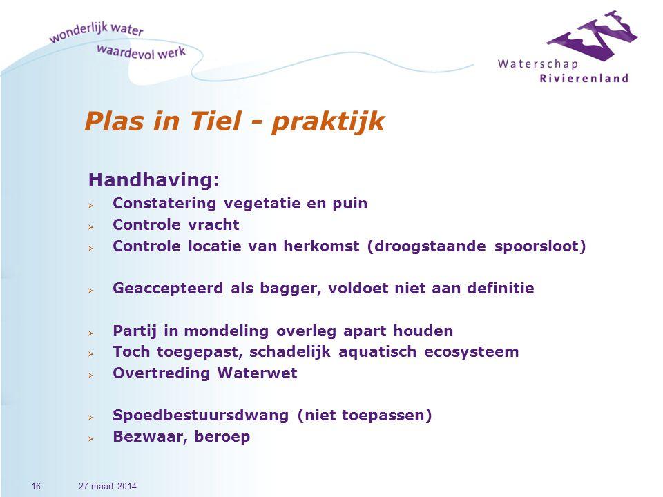 Plas in Tiel - praktijk Handhaving: Constatering vegetatie en puin
