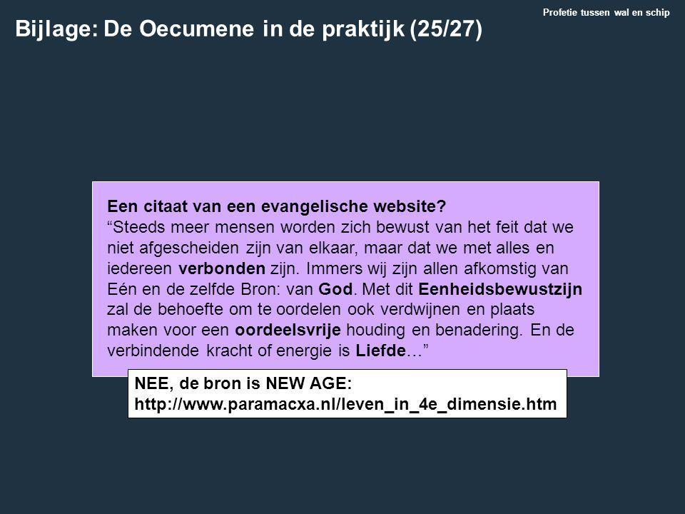 Bijlage: De Oecumene in de praktijk (25/27)