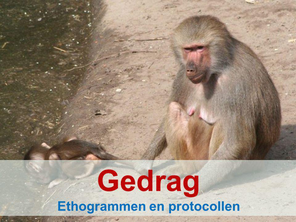 Gedrag Ethogrammen en protocollen