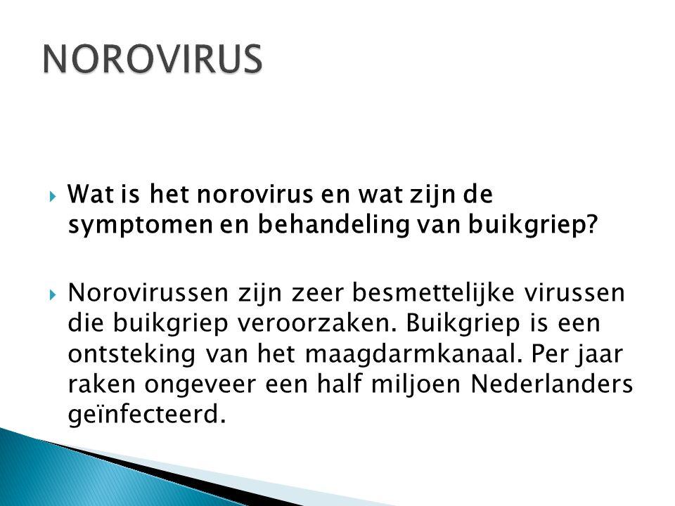 NOROVIRUS Wat is het norovirus en wat zijn de symptomen en behandeling van buikgriep