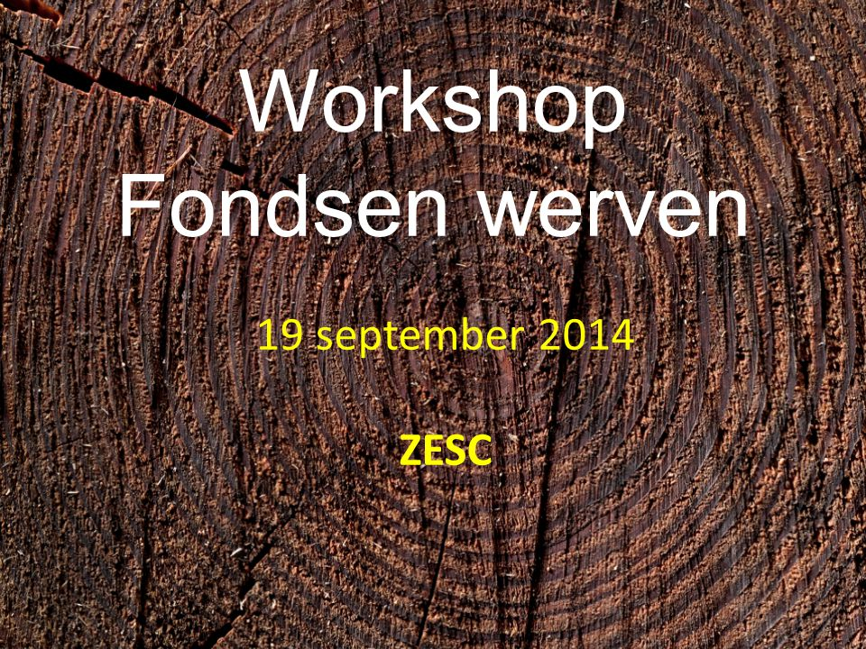 Workshop Fondsen werven