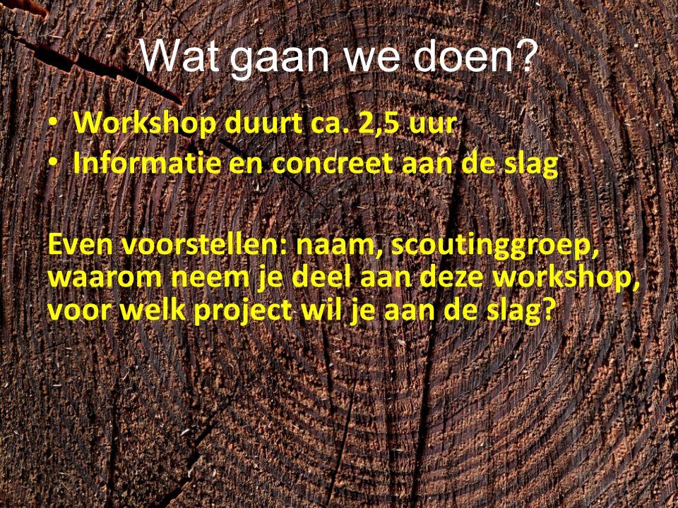 Wat gaan we doen Workshop duurt ca. 2,5 uur