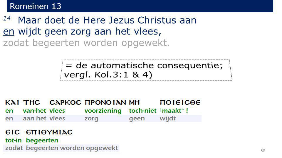 14 Maar doet de Here Jezus Christus aan