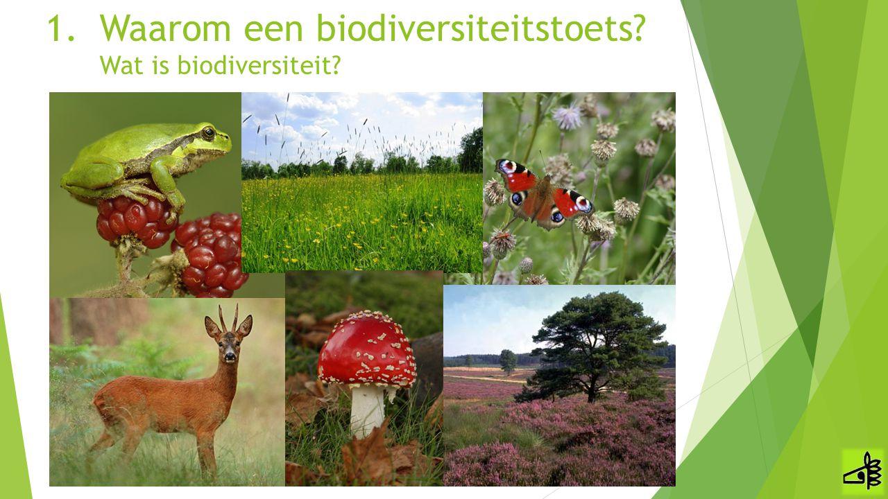 Waarom een biodiversiteitstoets Wat is biodiversiteit