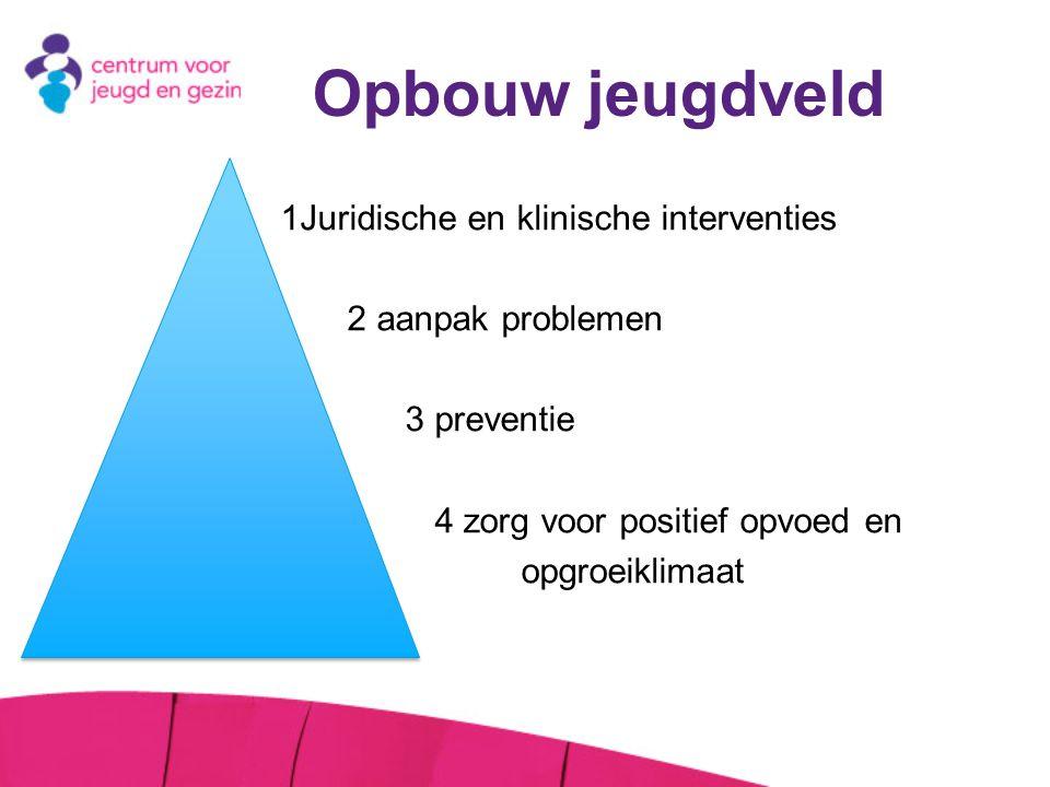Opbouw jeugdveld 2 aanpak problemen 3 preventie