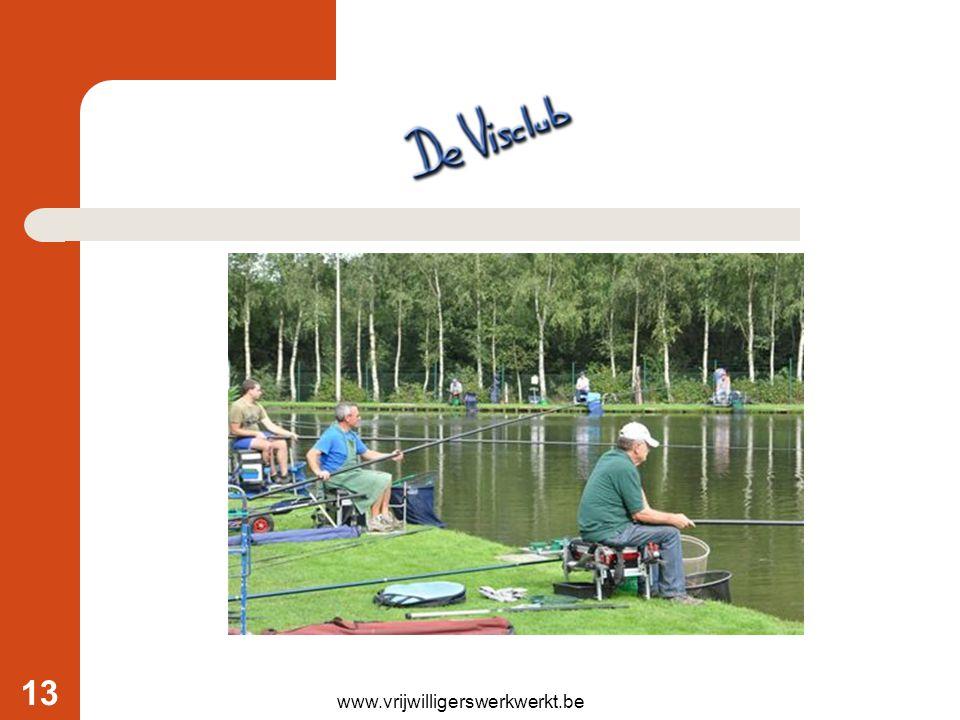 www.vrijwilligerswerkwerkt.be