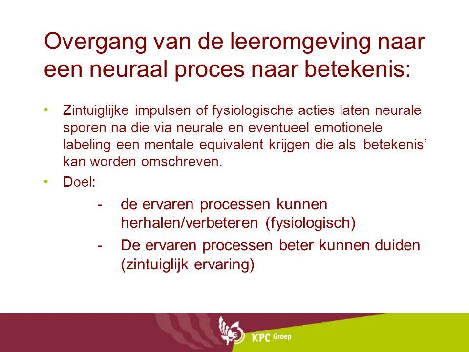 Overgang van de leeromgeving naar een neuraal proces naar betekenis: