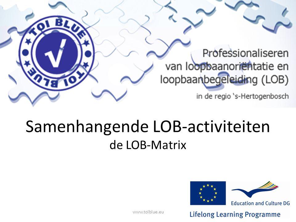 Samenhangende LOB-activiteiten de LOB-Matrix