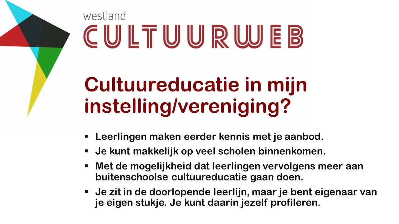 Cultuureducatie in mijn instelling/vereniging