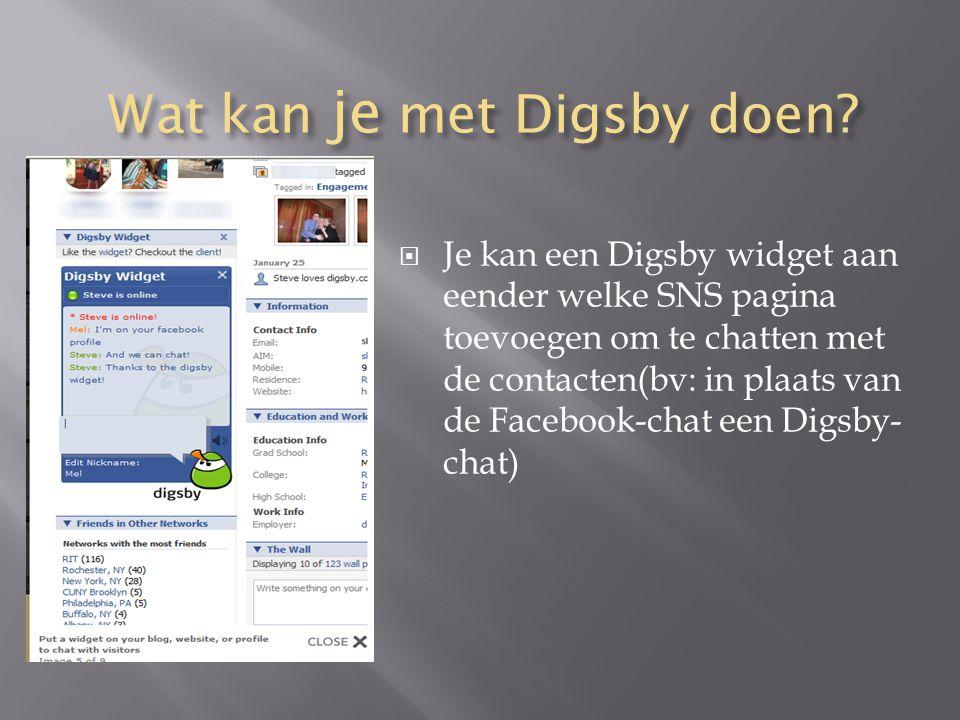 Wat kan je met Digsby doen