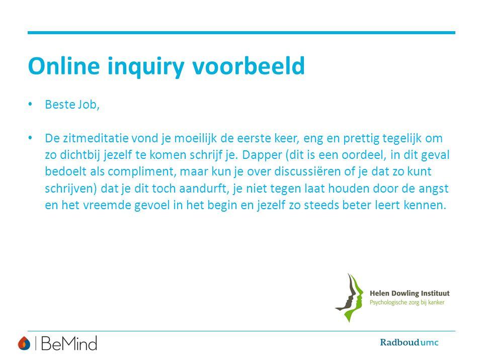 Online inquiry voorbeeld
