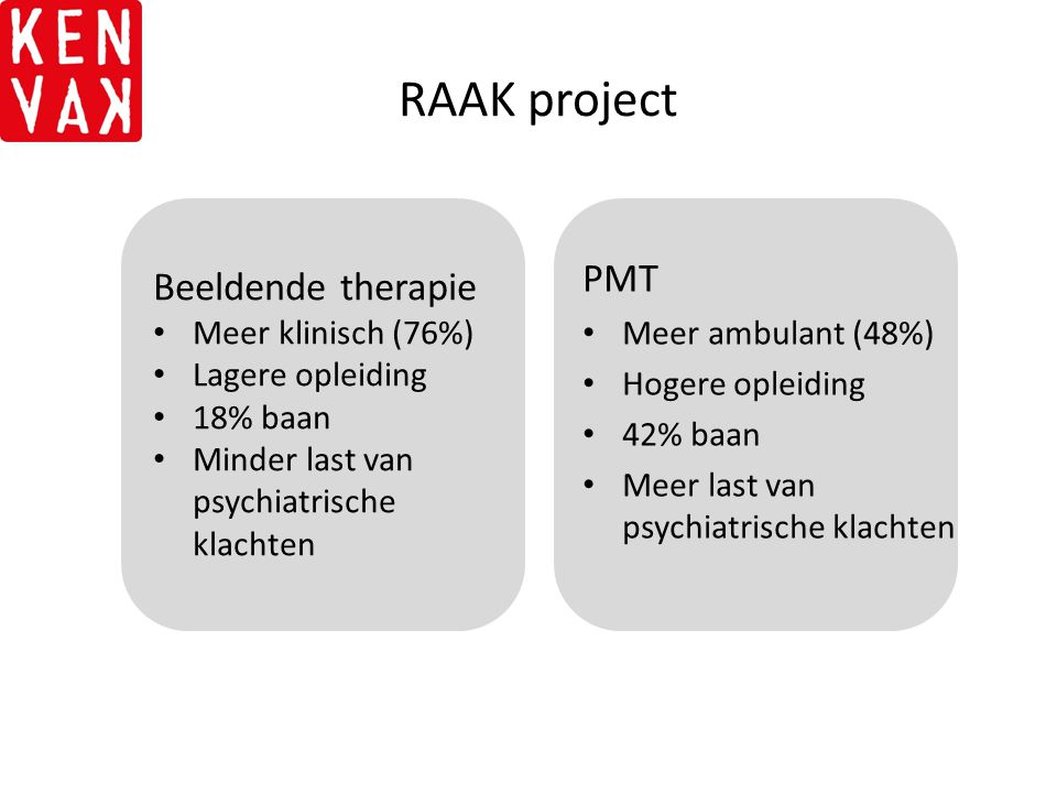 RAAK project PMT Beeldende therapie Meer ambulant (48%)
