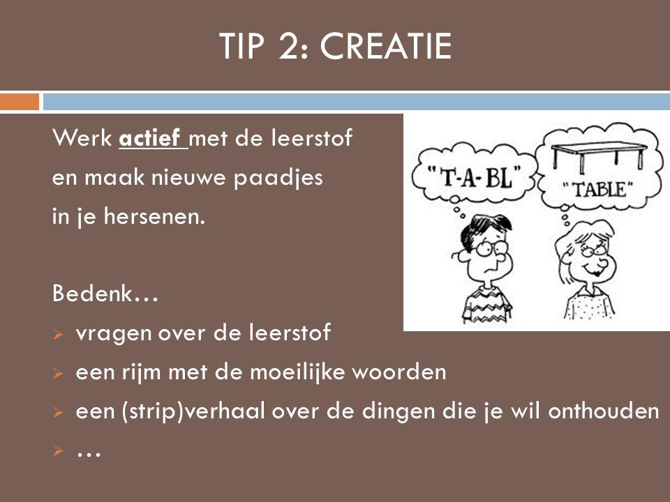 TIP 2: CREATIE Werk actief met de leerstof en maak nieuwe paadjes