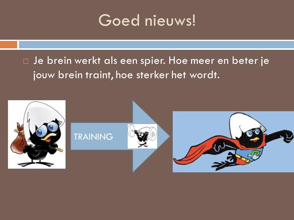 Goed nieuws! Je brein werkt als een spier. Hoe meer en beter je jouw brein traint, hoe sterker het wordt.