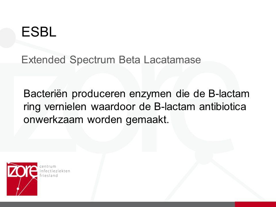 ESBL Extended Spectrum Beta Lacatamase