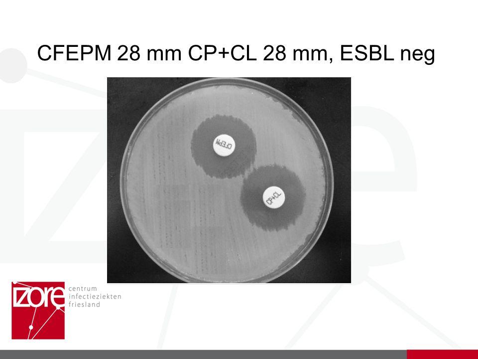 CFEPM 28 mm CP+CL 28 mm, ESBL neg