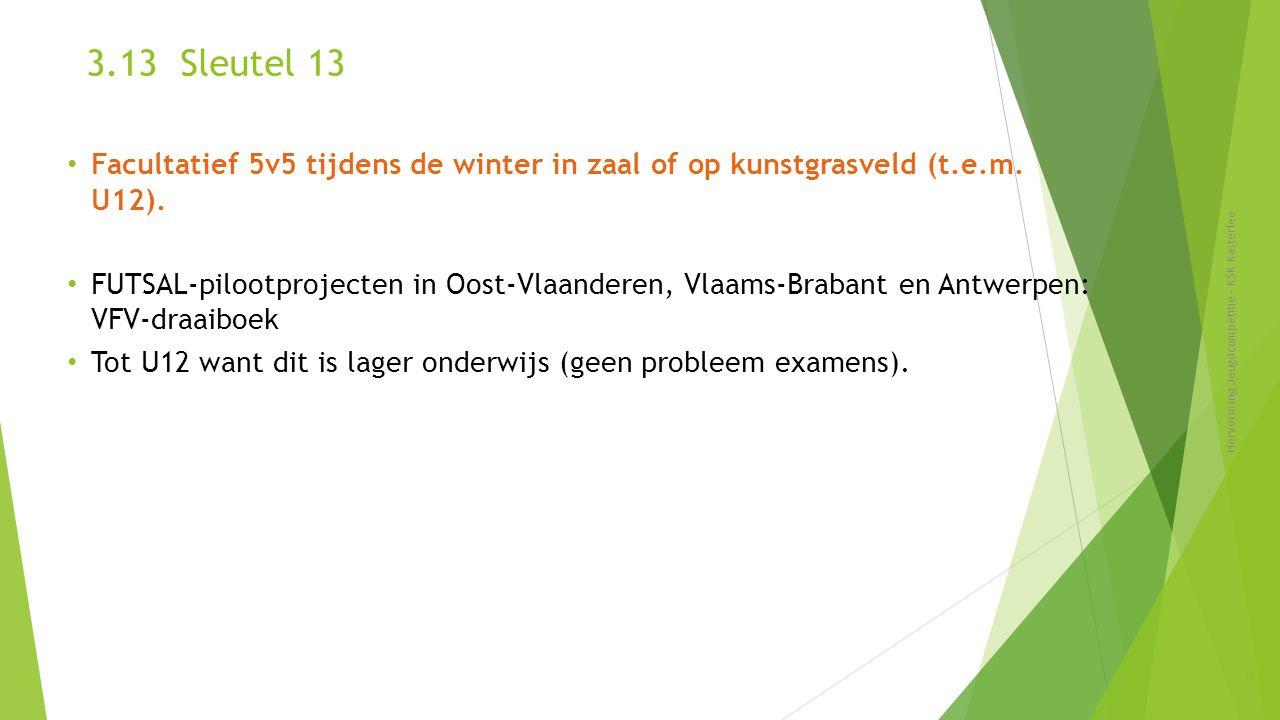 3.13 Sleutel 13 Facultatief 5v5 tijdens de winter in zaal of op kunstgrasveld (t.e.m. U12).