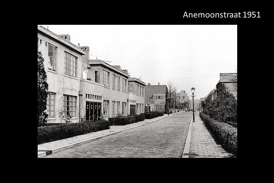 Anemoonstraat 1951