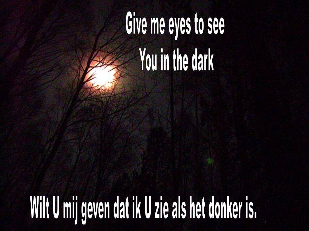 Wilt U mij geven dat ik U zie als het donker is.