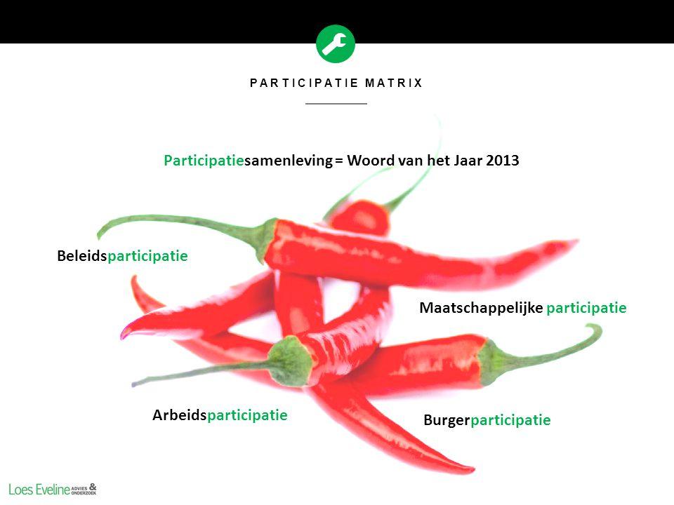 Participatiesamenleving = Woord van het Jaar 2013