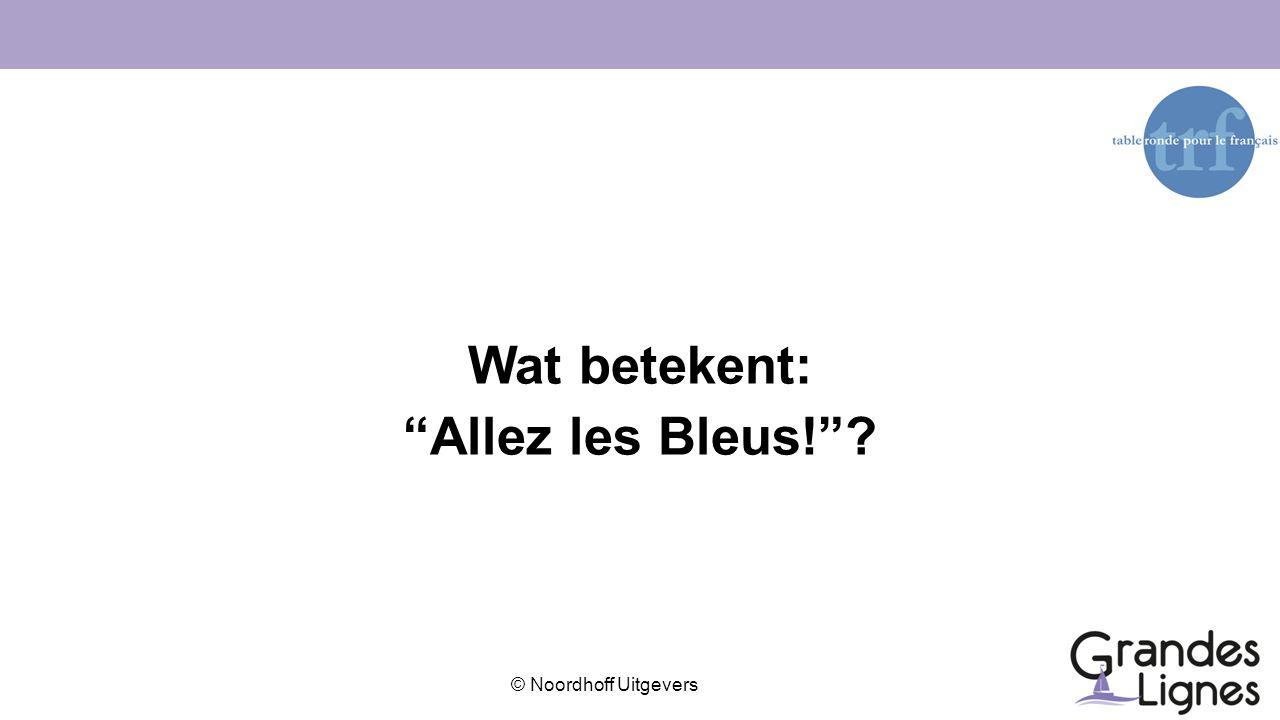 Wat betekent: Allez les Bleus!