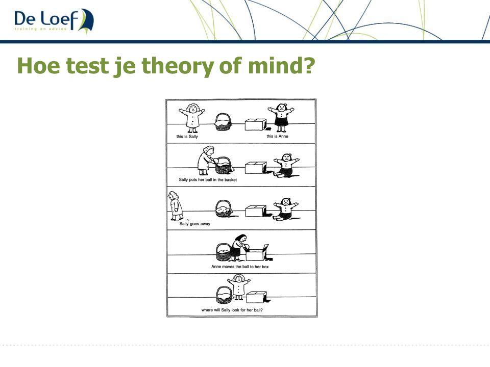 Hoe test je theory of mind